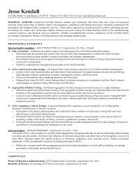 Internal Audit Resume Objective Professional Resume Templates