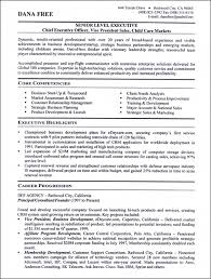 Executive Level Resume Samples Nice Senior Management Resume