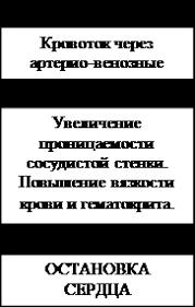 Клинические стадии фазы острого панкреатита Студопедия  принята на v Всероссийском съезде хирургов в 1978 году
