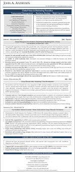 Sample Sales Marketing Executive Resume Writer John Andrese Sevte