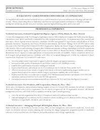 executive resume writing services executive resume writing service boston tips for sample demand