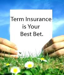 Quotes For Term Life Insurance Enchanting Instant Term Life Insurance Quotes 48 Term Life Insurance Quote