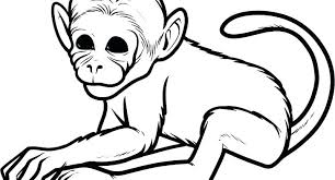 Monkey Coloring Pages Free Printable Valentine