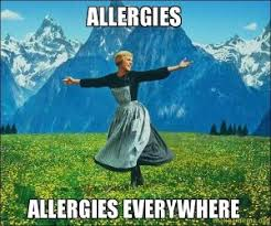 Spring + Allergies as Told Through Memes | Allergy Memes via Relatably.com
