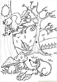 Small Picture Ures Pages Photo Forest P6444 Coloring Page Free Forest Coloring