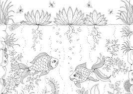 Coloriage Ocean Poissons Adulte Zen Anti Stress Dessin