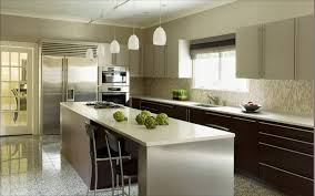 modern kitchen pendant lighting ideas. Modern Kitchen With Frosted Glass Pendant Lights Dark Wood Drawer Lighting Ideas