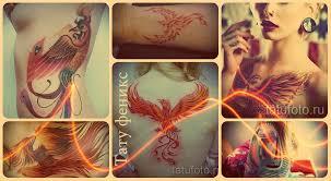 тату феникс фото примеры картинок для татуировки