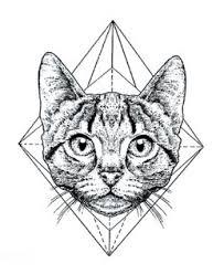 Tetování Kočka