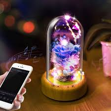 Bluetooth Speaker String Lights Unique Rechargeable LED Night Light Streamer Glass Bottle Wireless