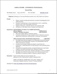 tags resume examples for it professionals resume examples for professional summary resume format for experienced it professionals resume profile resume examples for it professionals