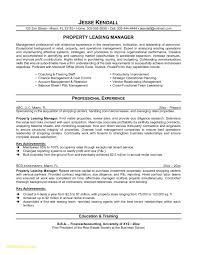 It Consultant Resume Beautiful It Consultant Resume Sample Download