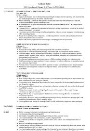 Technical Services Manager Resume Samples Velvet Jobs
