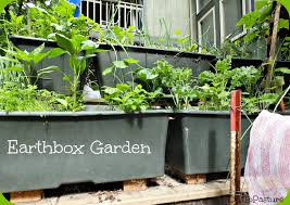 earth box garden out to pasture earthbox
