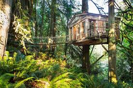 treehouse masters treehouse point. Fine Point TreeHouse Point For Treehouse Masters O