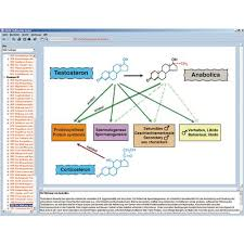 Hormones Hormone System And Control Interactive Cd Rom