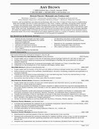 Entry Level Project Manager Resume Key Account Manager Sample Resume