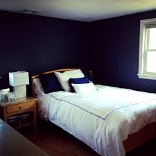 Master Bedroom  Navy Blue Bedrooms Pictures Options Amp Ideas - Dark blue bedroom