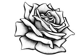 Images Of Roses To Draw How To Draw A Cross With A Rose Drawingnow