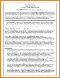 6 System Analyst Resume Mla Cover Page
