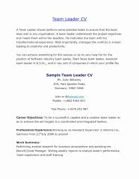 Warehouse Resume Sample Beautiful Cover Letter For A Team Leader