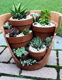 Small Picture The 25 best Outdoor cactus garden ideas on Pinterest Cactus