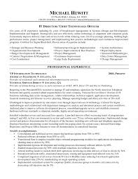 Information Technology Resume Sample CIO Chief Information Officer Resume 80