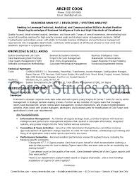 Sample Business Analyst Resume Business Analyst Resume Format Sample Fearsome Templates Senior Pdf 28