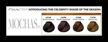 Loreal Majirel Mocha Hair Color Chart Google Search