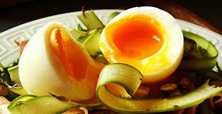 Resultado de imagen para temas organicas de huevo, gallinas