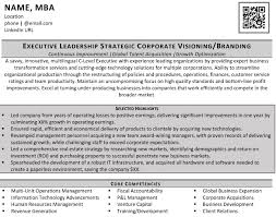 Resume Executive Summaries Write Your Director Vp Executive Level Resume