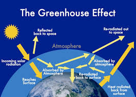 greenhouse effect and climate change assignment help