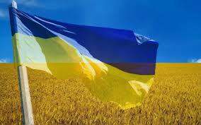 Державний прапор в Новопсковському районі. Хто проти?
