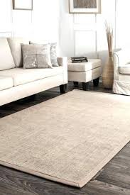 sisal area rugs toronto 6x9 9x12 bordered rug 4 x 6 at furniture licious room beige