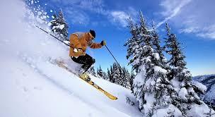 Виды лыжного спорта классификация и характеристики Горные лыжи