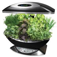 Kitchen Herb Garden Indoor The Kitchen Counter Herb Garden Hammacher Schlemmer