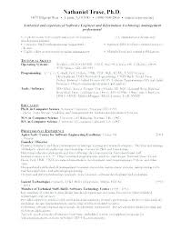Net Developer Resume Beauteous Objective In Resume For Software Engineer Magnificent Sample
