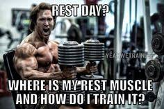 Workout Memes on Pinterest | Legs Day, Leg Day Memes and Funny Gym ... via Relatably.com