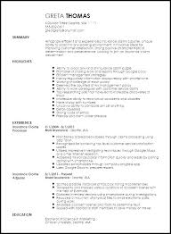 Claims Processor Sample Resume Inspiration Sample Resume Title Resume For Claims Adjuster Adjuster Sample