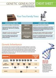 Basics At A Glance Chart Store Will Be Back Genealogy Cheating Cheat Sheets