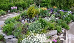 Small Picture Rock Gardens Designs Rock Garden Designs The Gardens Best Interior