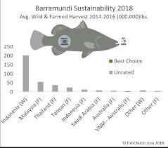 Barramundi Fishchoice