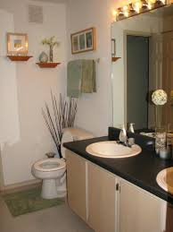 apartment bathroom decorating ideas enchanting amazing small in for bathrooms rental e21 bathroom
