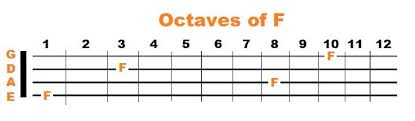 4 String Bass Guitar Fretboard Chart Mastering The Fretboard Bass Guitar Notes Simplified