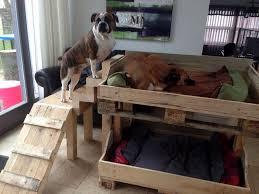 diy pallet dog bed plans
