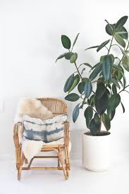 Full Size of Plant:indoor House Plants Green Beautiful Indoor House Plants  18 Indoor Plants ...