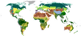 Евразия Википедия Природные зоны править править код