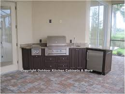 Cabinets For Outdoor Kitchen Kitchen Outdoor Kitchen Cabinets And More Amazing Outdoor