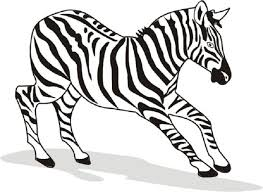 Small Picture Free Printable Zebra Coloring Pages For Kids Zebra Coloring Pages