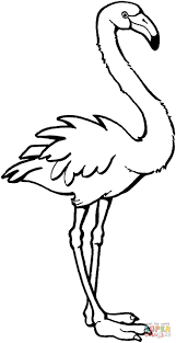 Flamingo Coloring Page From Flamingos Category